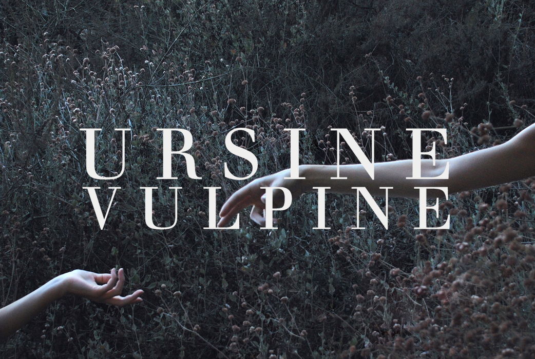Ursine vulpine ft. Annaca  wicked game